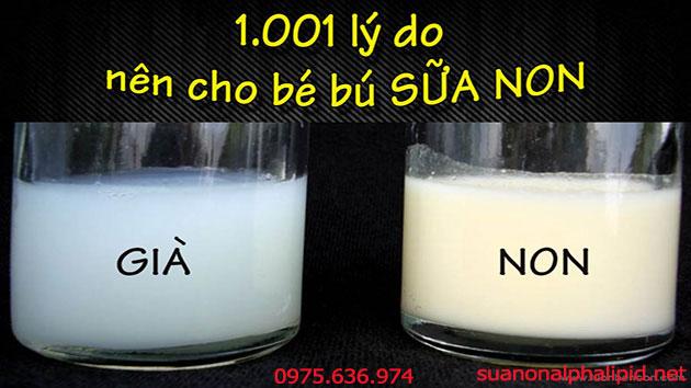 Phân biệt sữa non - sữa già