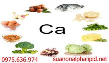 sua-non-alpha-lipid-nguon-cung-cap-canxi-moi-ngay